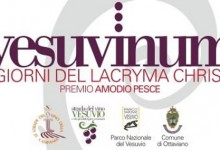 Vesuvinum – I Giorni del Lacryma Christi